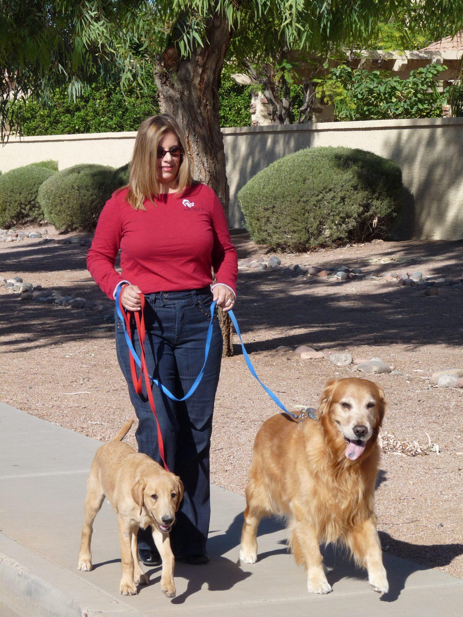 Alternative Pet Care Archives Page 2 Of 3 Tlc Pet Sitter East