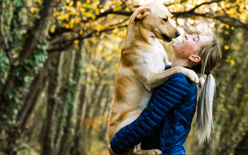 Why Hire a Pet Sitter and the Benefits of Using a Pet Sitter
