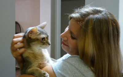 Sitters Care for Sensitive Pets While Owners Travel