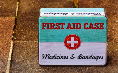 Emergency First Aid Tips for Pet Owners