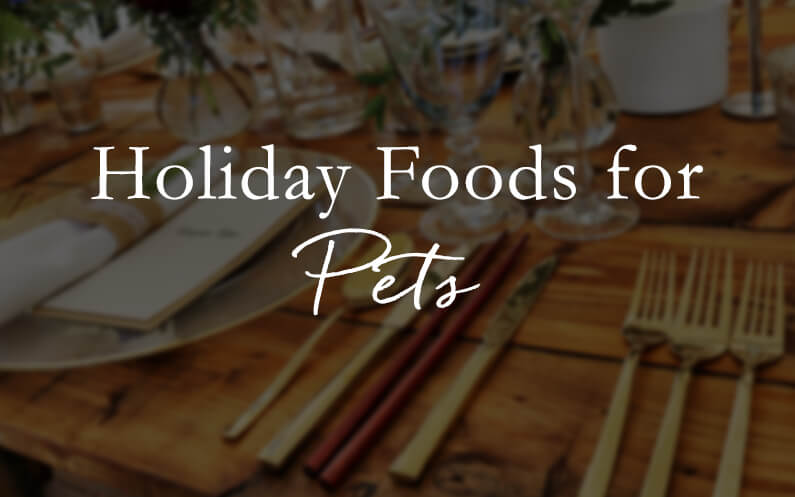 Holiday Foods for Pets
