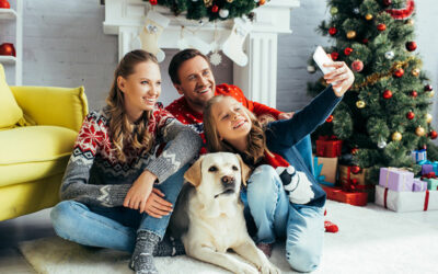 Hazards of Christmas Decorations for Pets