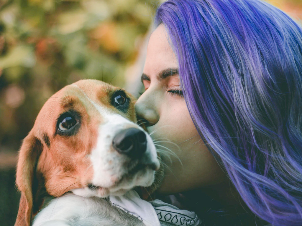 why hire a pet sitter